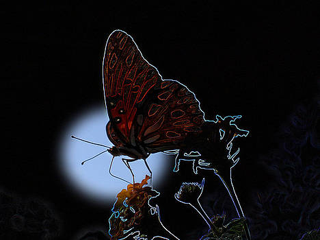 Butterfly by Rick McKinney