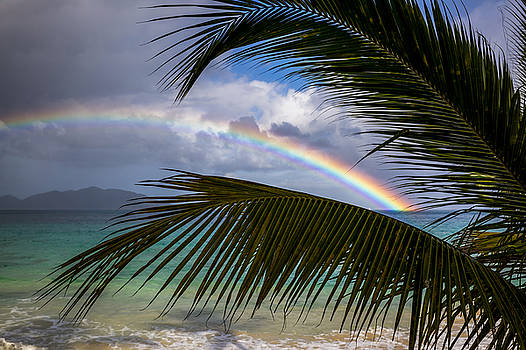 BVI Rainbow 3 by Ryan Moore