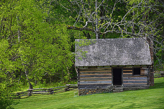 Cabin at Zebulon Vance Birthplace by Bruce Gourley