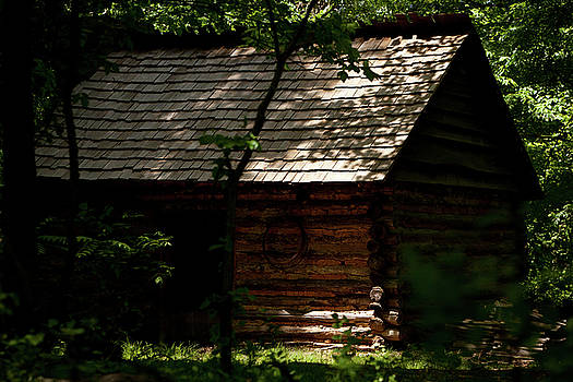 Cabin in the Woods by Walt Stoneburner