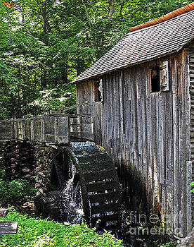 Cable Grist Mill 4 by Lydia Holly