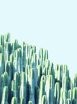 Cactus by the Sea by Uma Gokhale