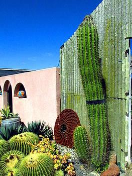 Joyce Dickens - Cactus Garden