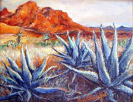Cactus View by Linda Shackelford