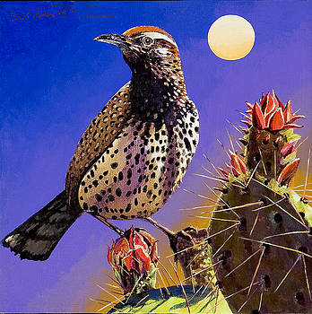 Cactus Wren by Bob Coonts
