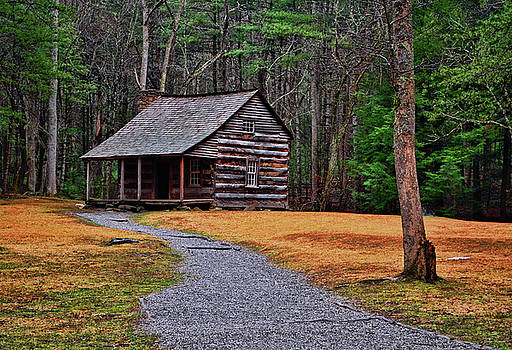 Cades Cove - Carter Shields Cabin 003 by George Bostian