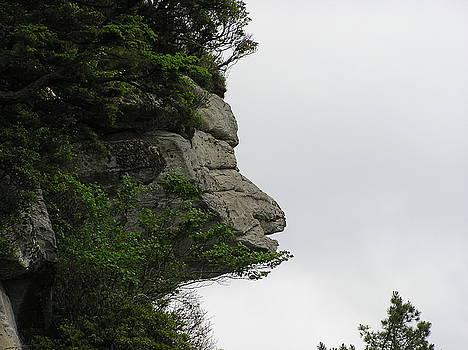Caesars Head South Carolina State Park by Diane Frick