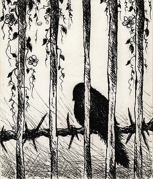 Caged Bird by Rachel Christine Nowicki