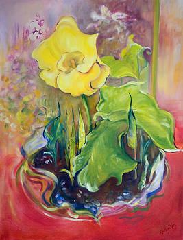 Cala Lily at the Elmvale Florist by Kathy Harker-Fiander
