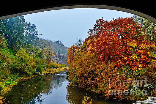 Calapooya River from Rochester Covered Bridge by Ansel Price