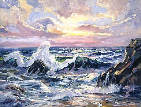 California Beach Sunset by David Lloyd Glover