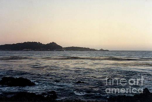 California Coast 2 by Ruth Housley