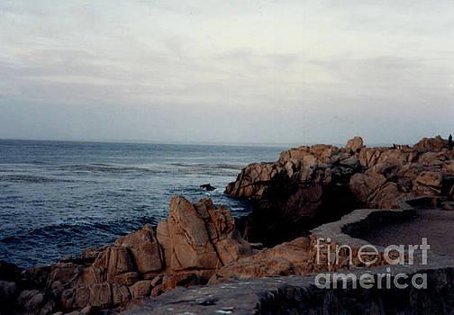 California Coast by Ruth Housley