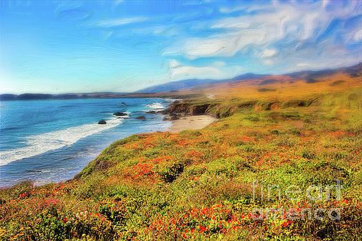Dan Carmichael - California Coast Wildflowers on Cliffs AP