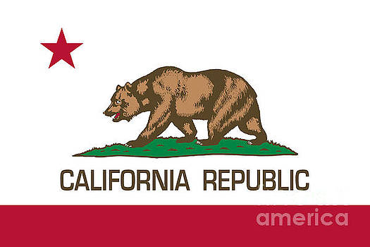 California Republic state flag Authentic version by Bruce Stanfield