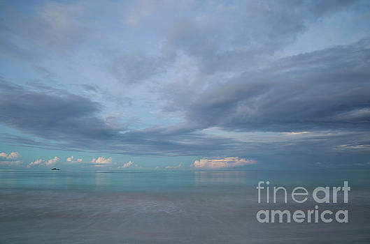 Calm Ocean Horizon at Dusk by Charmian Vistaunet