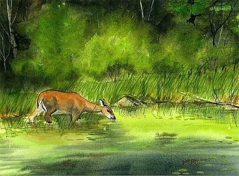 Calm Waters by Bud Bullivant