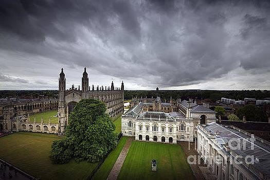 Svetlana Sewell - Cambridge College