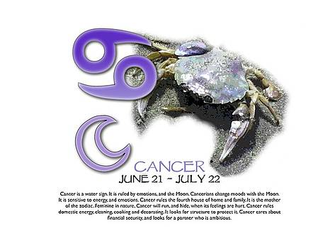 Cancer Sun Sign by Shelley Overton