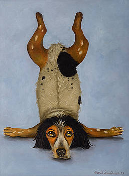 Leah Saulnier The Painting Maniac - Canine Contortionist pro photo