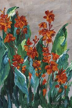 Cannas by Jamie Frier