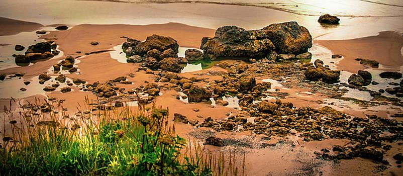 Cannon Beach, Oregon 3 by Shiela Kowing