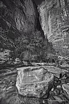 Canyon Corner - BW by Christopher Holmes