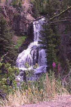 Canyon Falls by Carole Martinez