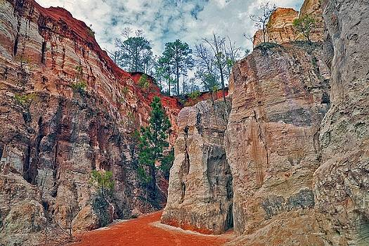 Canyon walk by Dennis Baswell