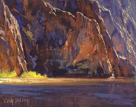 Canyon Walls by Cody DeLong