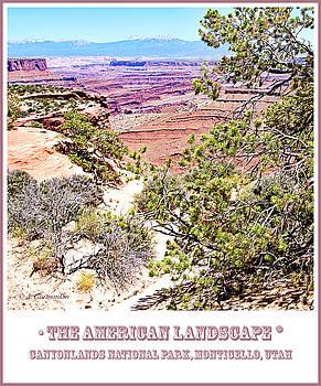 Canyonlands National Park Vista by A Gurmankin