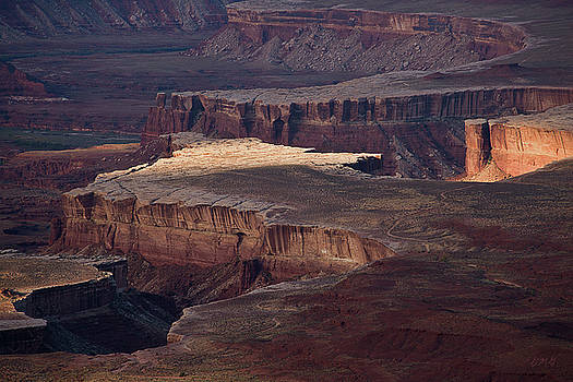 David Gordon - Canyonlands NP II Color