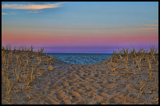 Cape Cod Beach by Jes Fritze