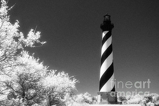 Cape Hatteras Lighthouse by Jeff Holbrook