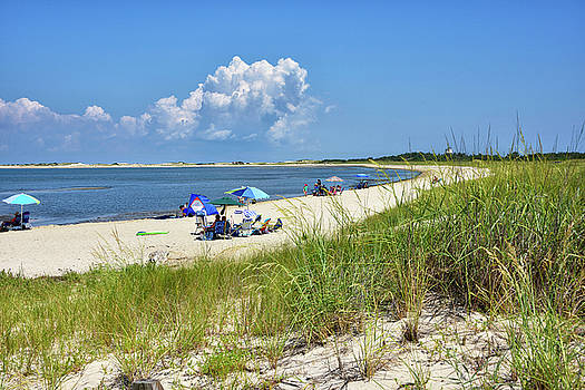 Cape Henlopen State Park - Beach Time by Brendan Reals