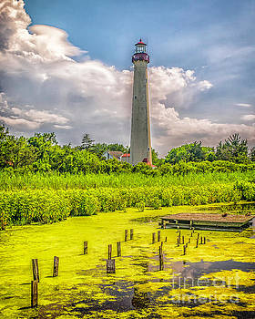 Cape May Light from the Back  Pond by Nick Zelinsky