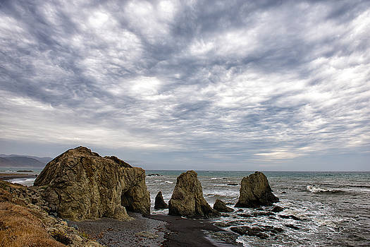 Cape Mendocino Coastline - California by Bruce Friedman