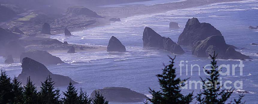 Cape Sebastian Seastacks by Tracy Knauer