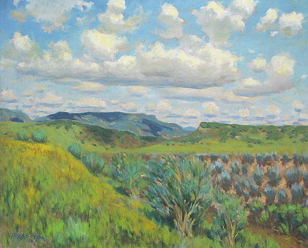 Capitan New Mexico by Texas Tim Webb