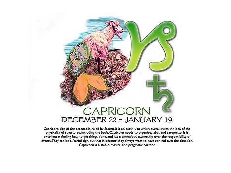 Capricorn Sun Sign by Shelley Overton