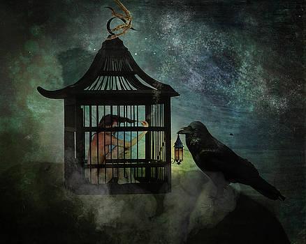 Captivity by Terry Fleckney