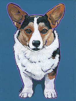 Cardigan Welsh Corgi by Nadi Spencer
