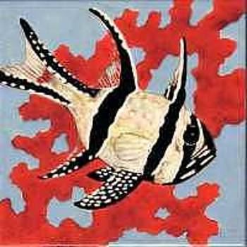 Cardinal Fish on 8 Inch Tile by Dy Witt