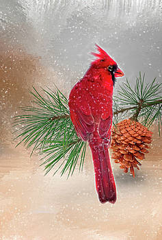 Cardinal in Snow by Mary Timman