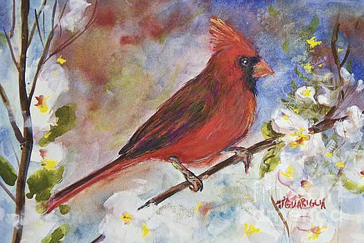 Cardinal by Joyce A Guariglia