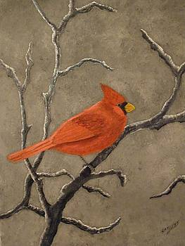 Cardinal by Ron Sargent