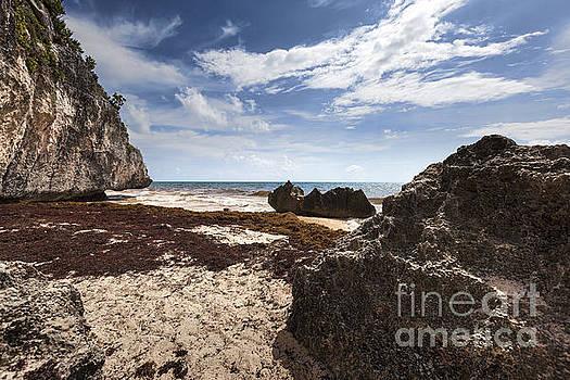 Caribbean Sea Coastline in Tulum Mexico by Brandon Alms