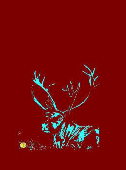 Reindeer, Caribu, Caribou by Robert Breton