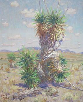 Carizozo Cactus  by Texas Tim Webb