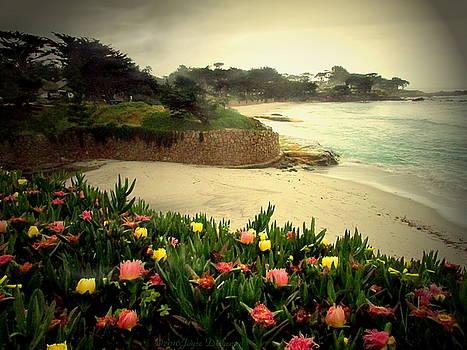 Joyce Dickens - Carmel Beach And Iceplant